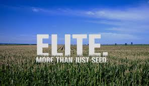 Elite. More than just seed